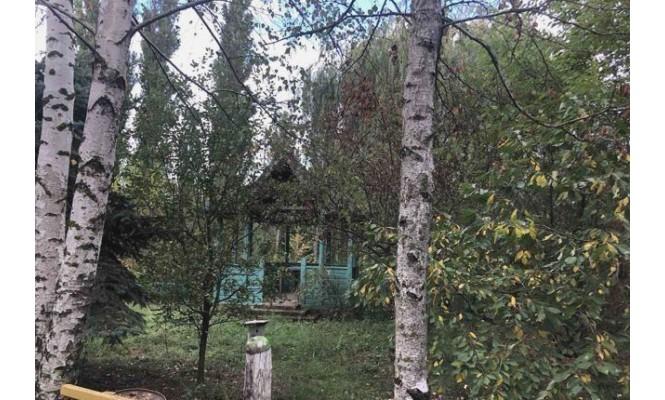 Продается участок, село Мирное,
